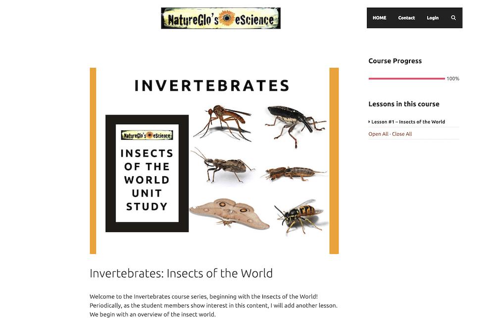 NatureGlo's Invertebrates: Inests of the World