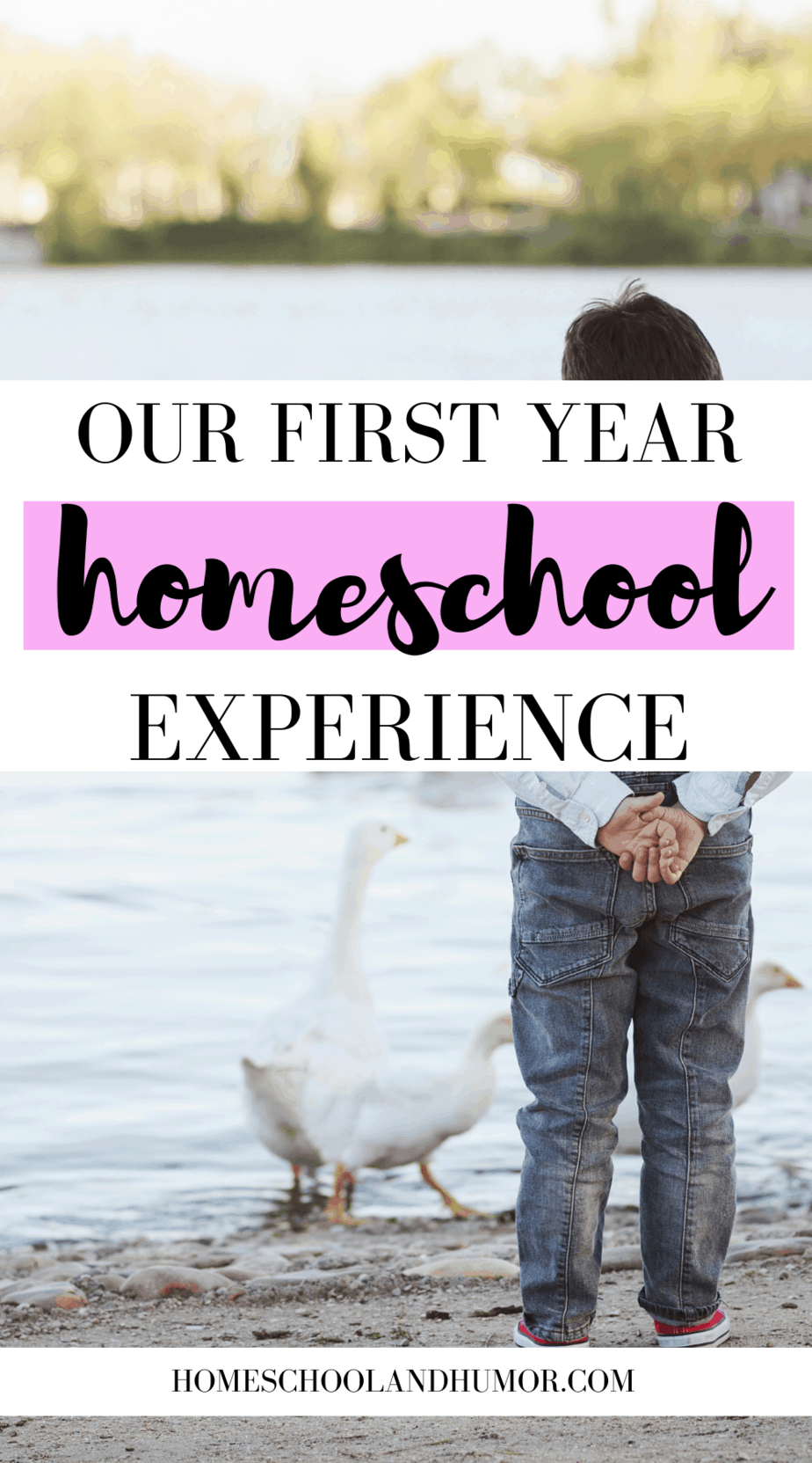 Our Homeschool Experience: Why Homeschooling Was The Best Choice For My Son