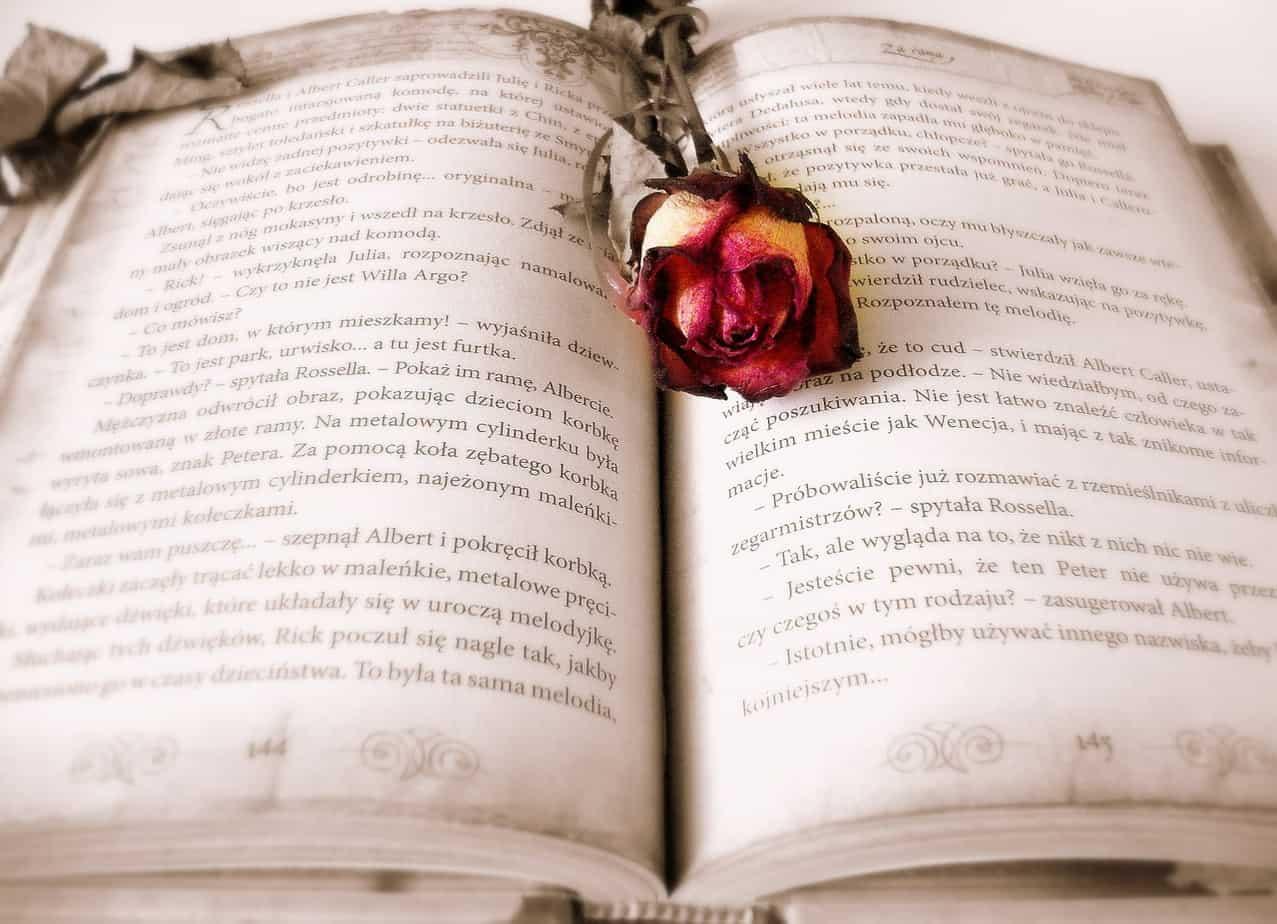 book, rose, book mark