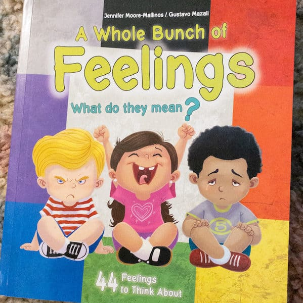 A Whole Bunch of Feelings, book about feeliings for kids