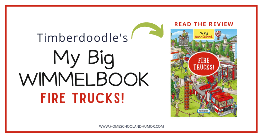 my big wimmelbook review
