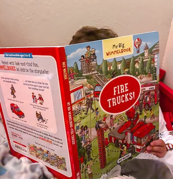 My Big Wimmelbook is a board book for toddler vocabulary where you find items throughout the pages and scenes.