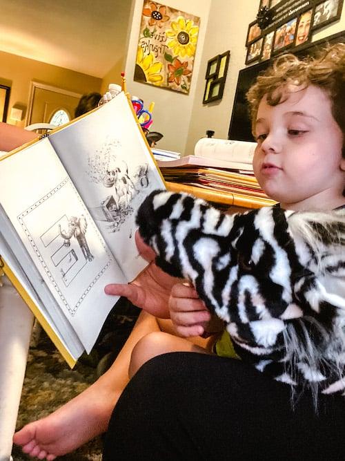 Reading AAR Zigzag Zebra book with Ziggy the Zebra puppet